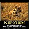 nepotism by admin in Demotivational posters